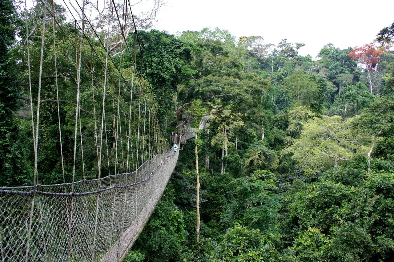 Kakum National Park - Ghana